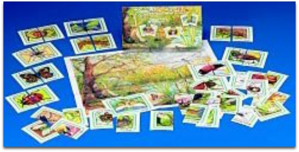 Learning Games for Kids in Preschool - The Bug Game